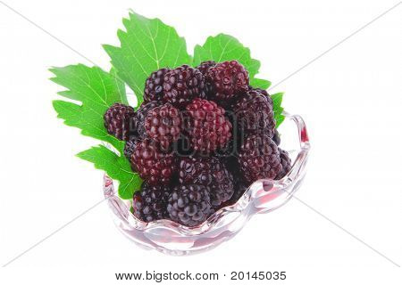 small portion of wild berry over white background
