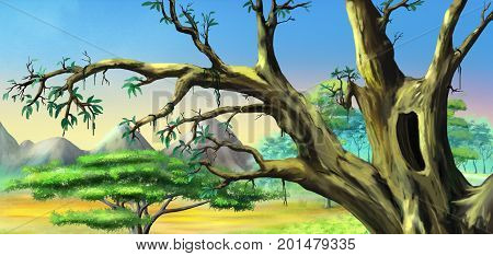 African Tree with Big Hollow against Blue Sky in a African national park. Digital Painting Background Illustration in cartoon style character.