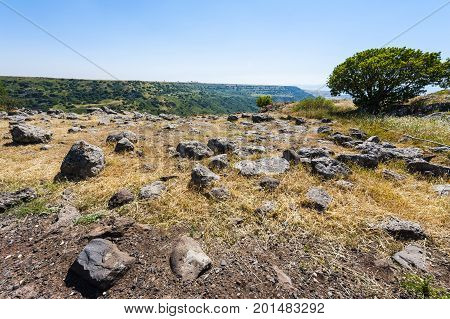 Gamla nature reserve located in the Golan Heights in Israel