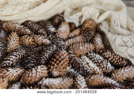 Winter Holidays Background Of Pine Cones Powdered With Artificial Snow And White Downy Shawl. Merry