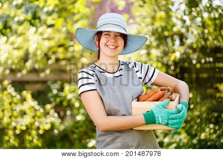 Photo of girl with carrot harvest in wooden box at garden