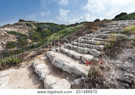 Dunes on the Shore of the Mediterranean Sea in Israel. Spring flowers in the Israeli Apollonia national park. Remnants of the stairs in archaeological excavations