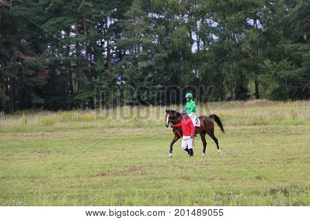 Medvedev, Russia, August 26, 2017: Open Championship On Horse Racing And Jumping Devoted To The Day