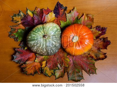 Two pumpkins - orange and green - on wooden background