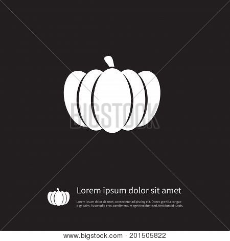 Pumpkin  Vector Element Can Be Used For Gourd, Pumpkin, Squash Design Concept.  Isolated Gourd Icon.
