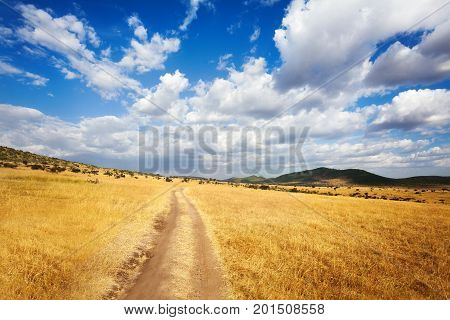 Beautiful cloudscape over arid African savannah with dirt road leading into mountains