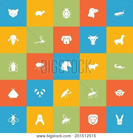 Collection Of Beetle, Steed, Tortoise And Other Elements.  Set Of 25 Animal Icons Set.