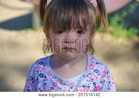 portrait of a little girl with pigtails