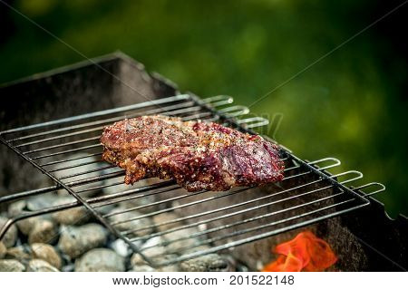 Hot spicy steak grilling on a summer barbecue over the hot coals garnished. Cooking food. close-up