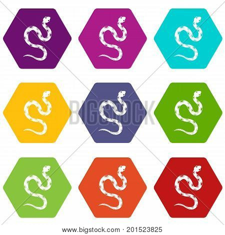 Venomous snake icon set many color hexahedron isolated on white vector illustration