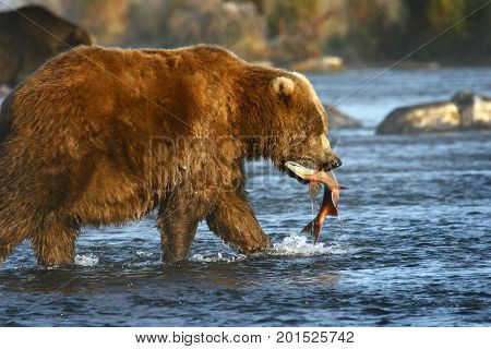 karluk chat Looking for the definition of kyk what does kyk stand for find out it here 4 meanings for kyk abbreviations and acronyms on acronymsandslangcom the world's most comprehensive acronyms and slang dictionary.