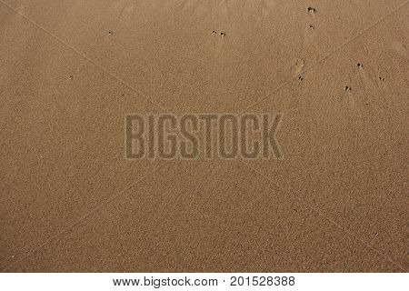 Sandy beach of Pictured Rocks National Lakeshore, Upper Peninsula of Michigan
