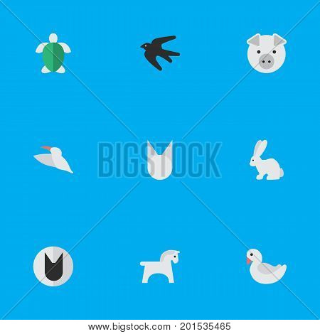 Elements Swan, Piggy, Hare And Other Synonyms Cute, Hoof And Rabbit.  Vector Illustration Set Of Simple Wild Icons.