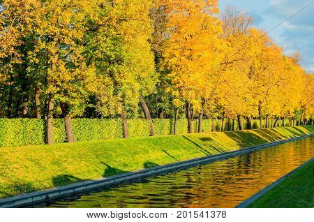 Autumn landscape city view of autumn trees with golden foliage along the city channel in autumn sunny weather. Bright autumn landscape in natural tones with yellowed autumn trees -city autumn scene. Autumn landscape in sunny weather