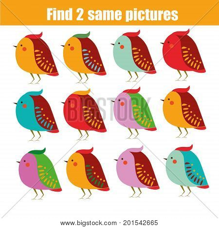 Find the same pictures children educational game. Find equal pairs of birds kids activity. Animals theme