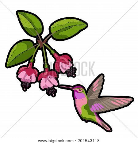 Pink fuchsia and hummingbird embroidery patch on white background. Romantic floral textile print.