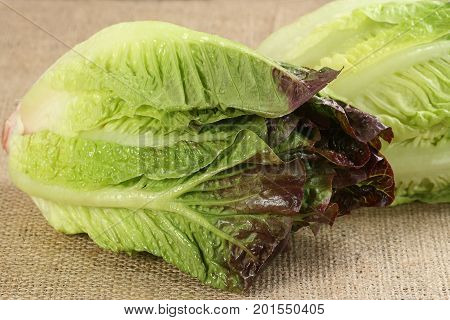 two fresh organic red gem lettuce on a hessian background