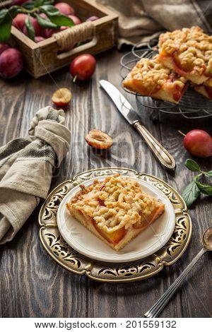 Plum crumb cake pie cut into squares. Healthy autumn food concept. Toned photo.
