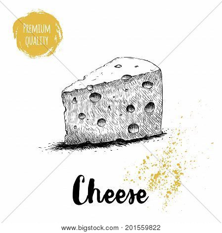 Hand drawn sketch style triangle piece of cheese. Vector organic food illustration poster. Premium quality product.