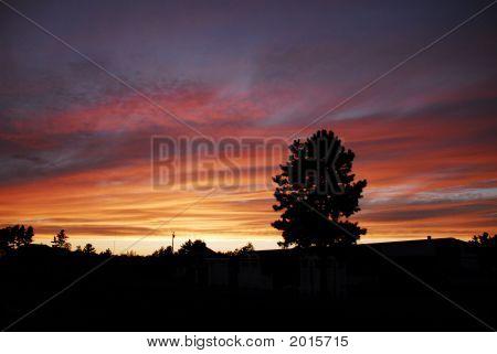 Beautyfull Sunset