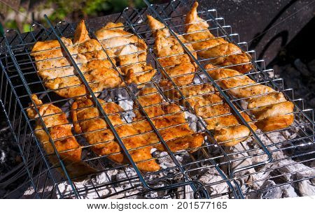 Chicken fillet fried on grill-grill on a Sunny summer day. Diet. The fight against excess weight. The horizontal frame.