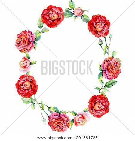 Wildflower rosa flower wreath in a watercolor style. Full name of the plant: rosa. Aquarelle wild flower for background, texture, wrapper pattern, frame or border.