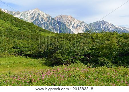 Japan Alps of Chubu Sangaku National Park, a day's train ride from Tokyo and popular place for skiing and snowboarding in winter and hiking and climbing in summer.