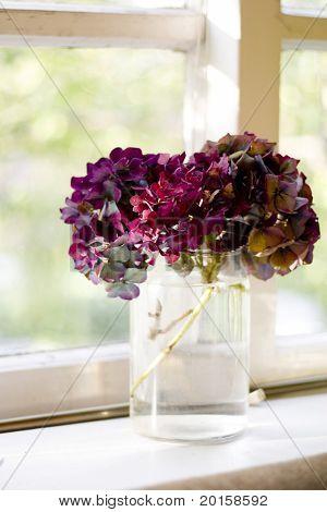 pretty flowers in a jar