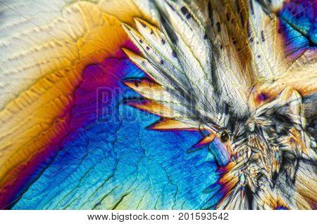 microscopic Galactose crystals illuminated with polarized light