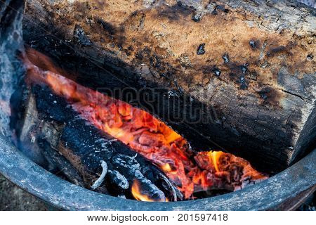 Log burning on the campfire with flames burning hot