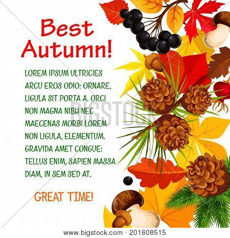Autumn poster template of fall forest nature. Autumn season leaf, acorn and mushroom banner border with yellow and orange foliage of maple and chestnut tree, rowan berry and pine cone for fall design