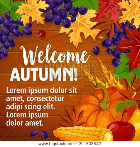 Welcome Autumn poster of fall harvest and seasonal foliage on wooden background. Vector pumpkin, grape fruit and rowan or cherry berry on maple leaf, autumn oak acorn and wheat in falling leaves
