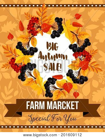 Autumn season sale banner with fall leaf and berry wreath. Promotion poster of autumn leaves, rowan berry branch and foliage of maple frame with ribbon banner for autumn harvest discount offer design