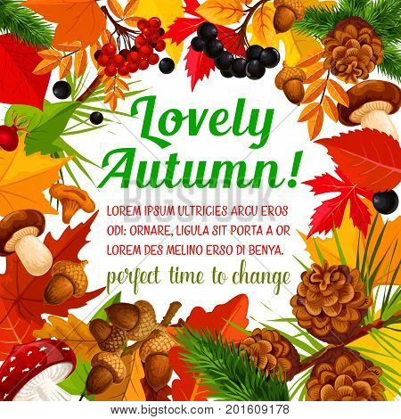 Autumn nature frame poster of fall season template. September leaf, autumn forest foliage of maple and chestnut tree, mushroom, acorn, rowan and briar berry, pine cone with text layout in center