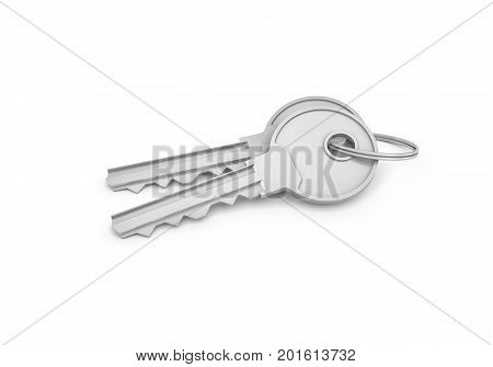 3d rendering of two isolated silver keys on a key ring. Safety and protection. Keep information locked. Password protected entry.