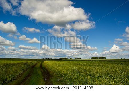a dirt road through fields with green grass, clouds lined up in a row
