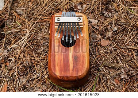 Traditional African Musical Instrument Kalimba On A Background Of Needles And Cones In A Forest, Top