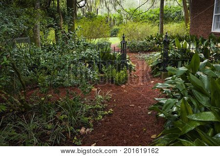 Secret garden trail path covered with lush green leaves plants foliage private park oasis