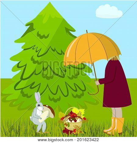 A girl and a hare gather mushrooms in a forest glade, vector illustration