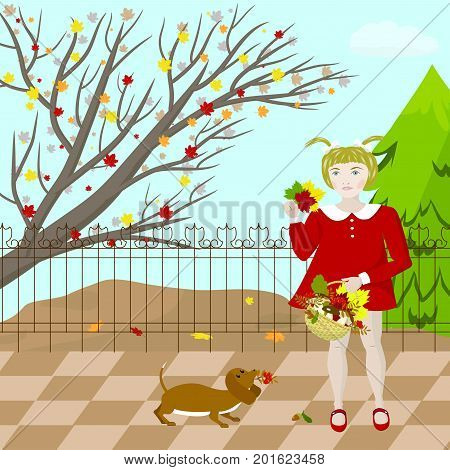 A girl walks with a dog in an autumn park, collects mushrooms and colorful leaves, vector illustration