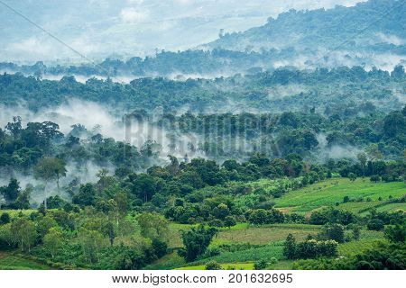 Beautiful Aerial view of hills in rural covered with fog in the morning