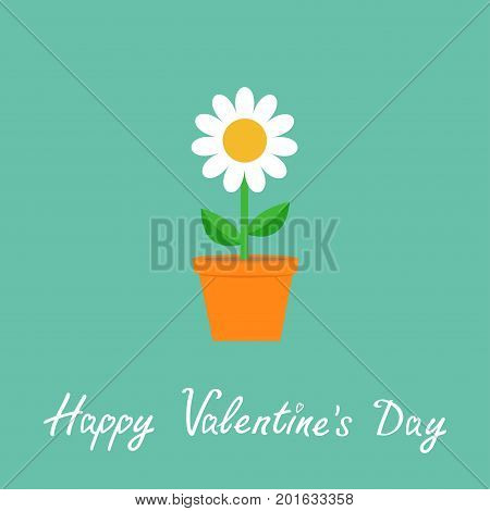 Happy Valentines Day. Daisy in red pot. Camomile icon. White chamomile. Cute flower plant collection. Growing concept. Flat design. Green background. Isolated. Love card. Vector illustration