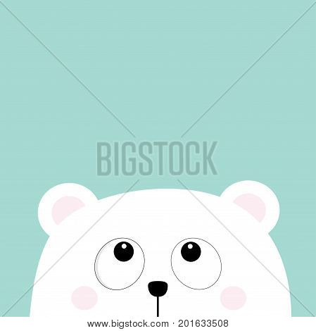 Polar white little small bear cub head face looking up. Big eyes. Cute cartoon baby character. Arctic animal collection. Flat design Winter blue background Isolated. Vector