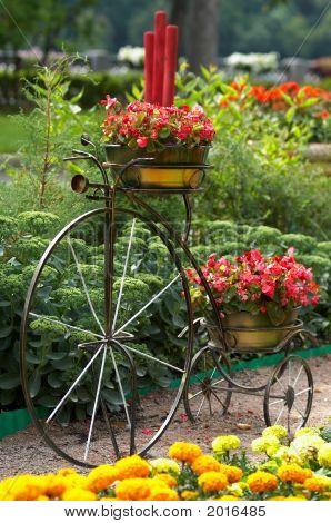 Vintage Three-Wheeled Bicycle