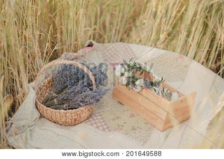 Basket with lavender on a wheat field