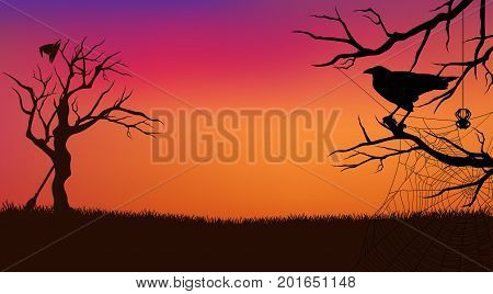 Halloween evening vector background with raven bird spider web witch broom and hat and bare twisted tree branches silhouette