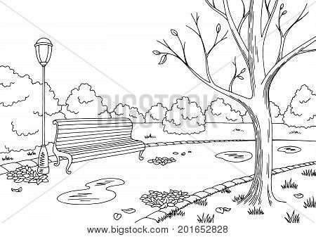Autumn park graphic black white landscape sketch illustration vector