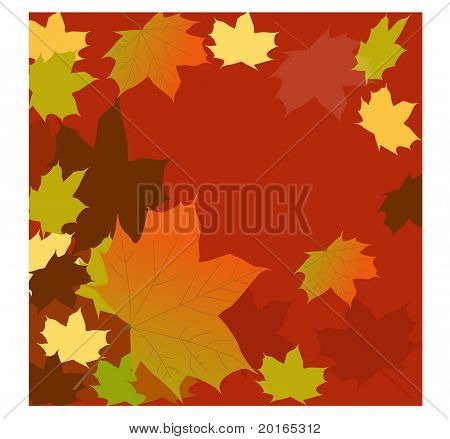 falling multicolored leaves