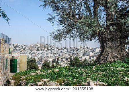 View On Arabian Quarter Of Hebron