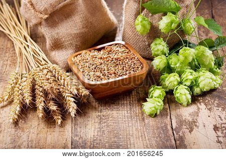 Green Hops, Wheat Ears And Grains